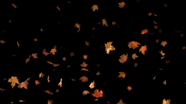 Loopable Falling Leaves Background video