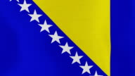 Loopable: Flag of Bosnia and Herzegovina video