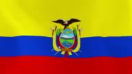Loopable: Flag of Ecuador video