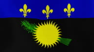 Loopable: Flag of Guadeloupe video