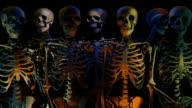 Loopable, Halloween Skeleton video