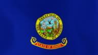 Loopable: Idaho Flag video