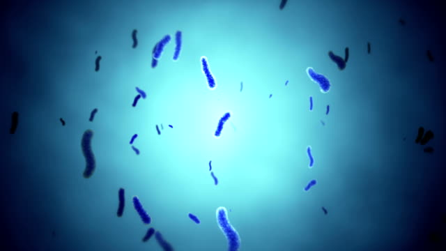 HD: Loopable Shot Of Bacteria video