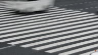 Loopable Time Lapse - Busy crosswalk with traffic video