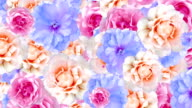 Looped Flower Background video