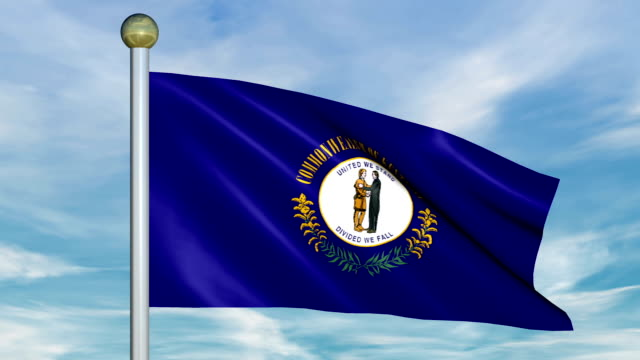 Looping Animated Flag of Maine on a Pole video