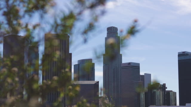 Los Angeles video