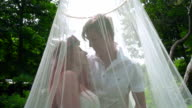 Love couple kissing. Pregnant couple kissing behind wedding veil at park video