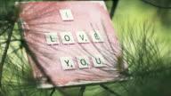 Love! video