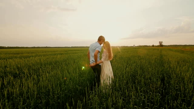 Lovely couple kissing in a meadow at sunset video