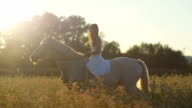 SLOW MOTION: Lovely girl riding white horse in flowering pink field at sunrise video