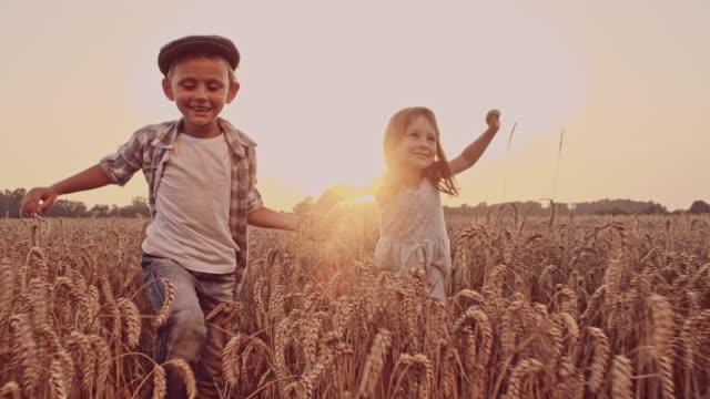 SLO MO Lovely kids walking in the wheat field video