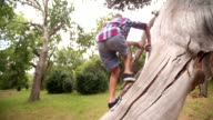 Loving boy playing on a tree trunk in park video