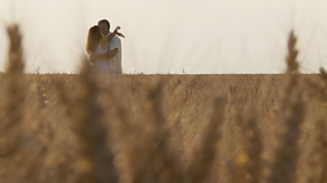 HD DOLLY: Loving couple hugging in wheat video
