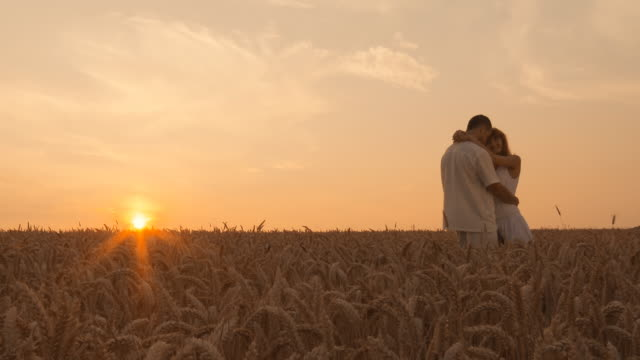 HD DOLLY: Loving couple in wheat video