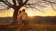 DS Loving couple kissing at sunset video