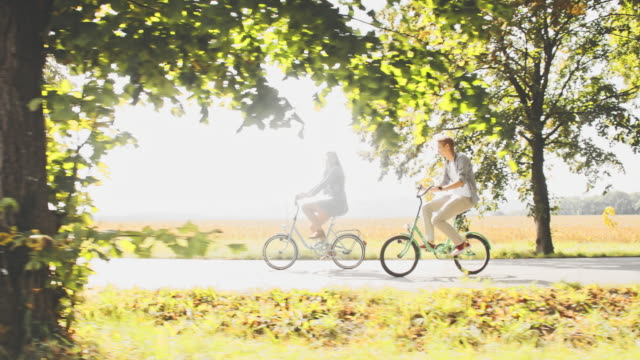 TS Loving couple riding bicycles along tree lined road video