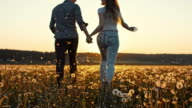 SLO MO Loving couple running in meadow at sunset video