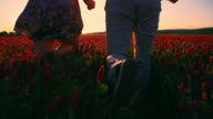 SLO MO Loving couple running in the field of clover video