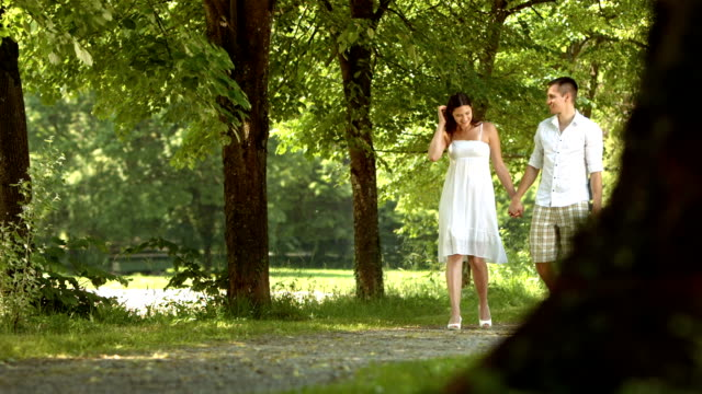 HD DOLLY: Loving Couple Walking In The Park video
