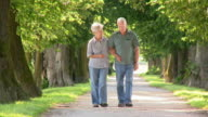 HD: Loving Senior Couple Walking In The Park video