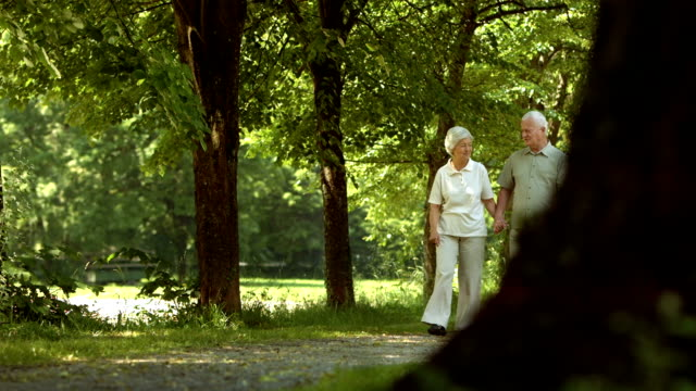 HD DOLLY: Loving Senior Couple Walking In The Park video