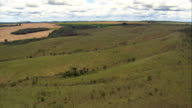 Low Flight Across Grassland And Fields, Minas Gerais State  - Aerial View - Goiás, Brazil video