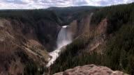 Lower Falls in Yellowstone video