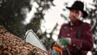 SLO MO LD Lumberjack bucking a tree with chainsaw video