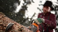 SLO MO Lumberjack cutting into tree with chainsaw video