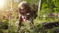 Lumberjack is Bucking a Tree into Logs video