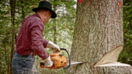 SLO MO Lumberjack making a back cut with chainsaw video