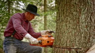Lumberjack making a cut with chainsaw video