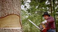 SLO MO Lumberjack making back cut using chainsaw video