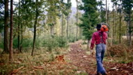 DS Lumberjack walking in forest with chainsaw on his shoulder video