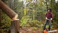 SLO MO Lumberjack with axe watching tree fall video