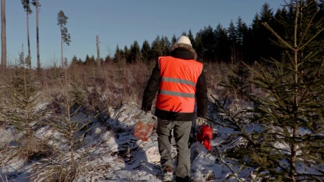 Lumberjack with chainsaw and petrol can on snow covered path video