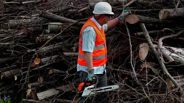 Lumberjack with chainsaw at the pile of branches video