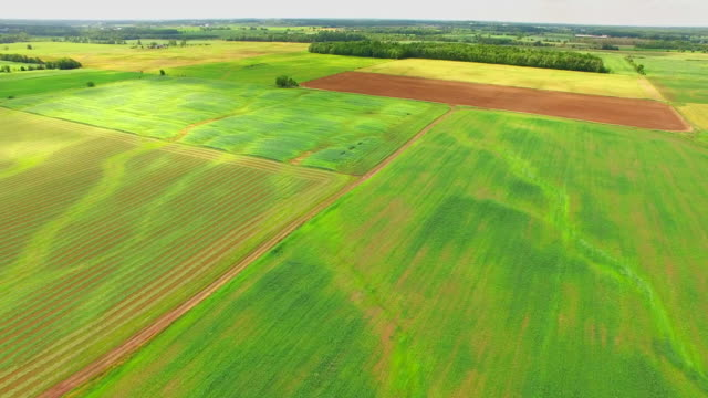 Lush Green Pastures, Fields of Wisconsin video