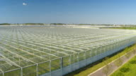 AERIAL: Lush green vegetables growing in modern horticultural glasshouses video