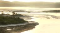 Lush Landscape at Sunrise video