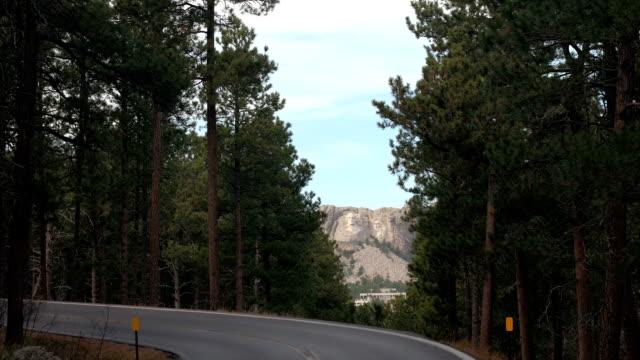 Lush pine tree canopies above the Iron Mountain highway framing Mount Rushmore video