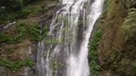 HD lush tropical waterfall video