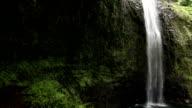 Lush Waterfall Steadicam Shot video