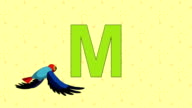 Macaw. English ZOO Alphabet - letter M video