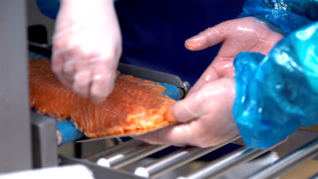 Machine for automatic cutting fish slicing fillet of salmon. Close up video