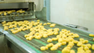 Machine processing nuggets at a food factory video
