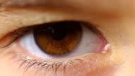 macro close-up eye blinking child eyelashes video
