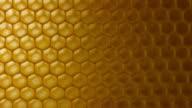 Macro dolly: honeycomb video