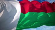 Madagascar Flag video